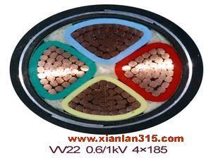 VV22、VLV22系列聚氯乙烯绝缘电力电缆