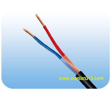 RVV型300/500V铜芯聚氯乙烯电缆2芯