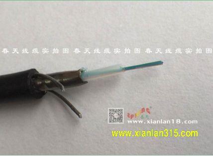 GYXTW-8B1室外单模光缆(系列)-春天线缆