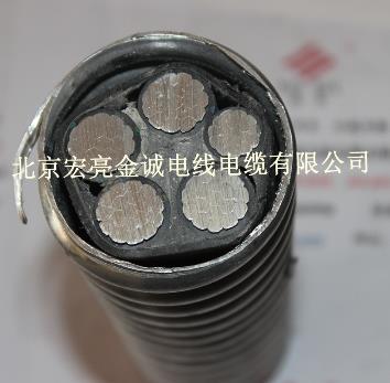美标联锁铠装聚氯乙烯护套铝合金电缆-宏亮电缆-北京