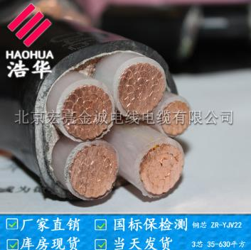 低烟无卤金尊国际WDZN-YJV-宏亮电缆厂家直销-北京