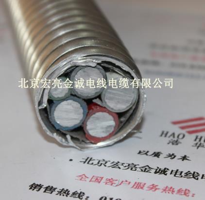 美标合金电缆 AC90/YJHLV8-宏亮电缆-北京