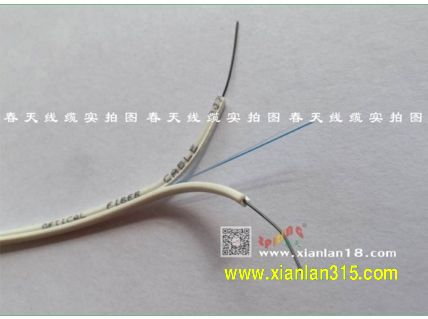 二芯皮线光缆(颜色可选)-春天线缆