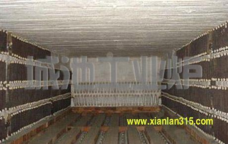 节能型全纤维台车炉产品图片展示
