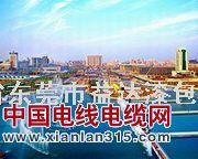 东莞漆包线产品图片展示