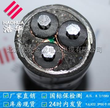 铝芯高压电缆10KV 电力电缆-宏亮电缆厂家直销-北京  宏亮电缆—纯国标保检测  以质为本,以诚金尊娱乐平台图片展示