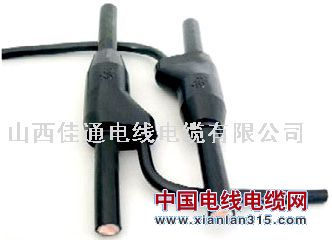 预分支电缆-山西佳通金尊娱乐平台图片展示