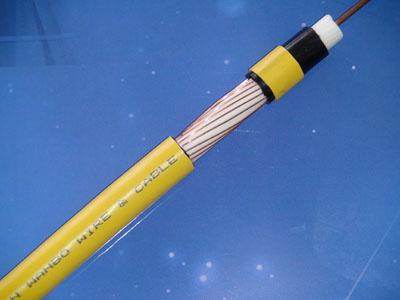 矿用易胜博ysb88手机版07-江苏天科线缆有限公司产品图片展示