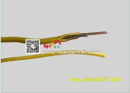 NH-BV耐火线缆(系列)-春天线缆产品图片展示