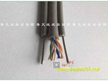 加固扁形网线(系列)-春天线缆产品图片展示