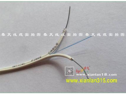 二芯皮线光缆(颜色可选)-春天线缆产品图片展示