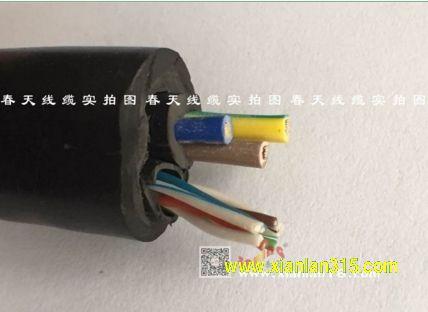 挤压式圆形网线电源综合线-春天线缆产品图片展示