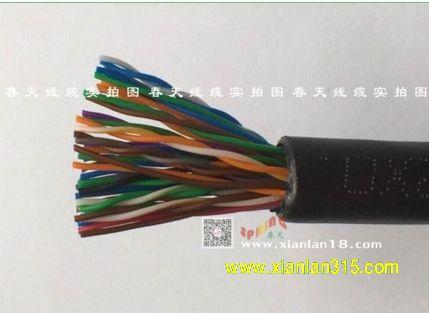 大对数数据线(系列)-春天线缆产品图片展示