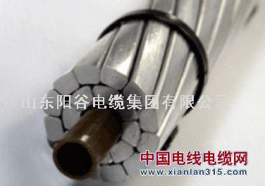 JRLX/T(ACCC)复合导线-阳谷电缆集团金尊娱乐平台图片展示